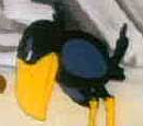 Minah Bird
