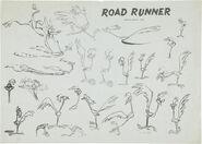 Road-Runner Model Sheet