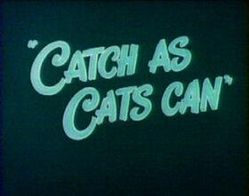 Catchascatscan
