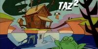 Taz - 2