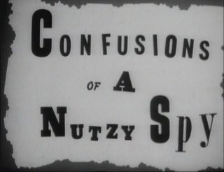 File:Confusions of a Nutzy Spy.jpg