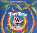 Tiny Toon Adventures: Buster's Hidden Treasure