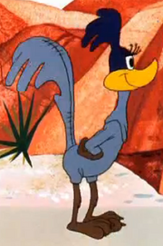 Female Road Runner Costume