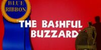 The Bashful Buzzard