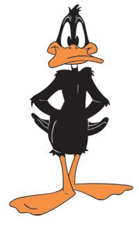 Daffy-1-