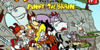 Animaniacs Comics