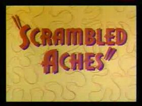 Road-runner-si-wile-e-coyote--scrambled-aches