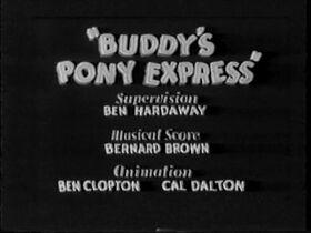 Buddysponyexpress