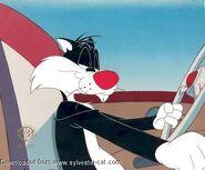 12)-63014-Sylvester