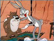 Taz-warner-brothers-animation-71753 446 336