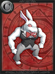 Macho Rabbit
