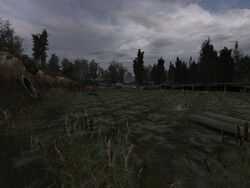 ForgottenSwamp