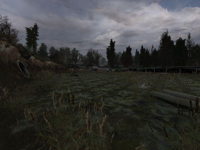 File:ForgottenSwamp.jpg