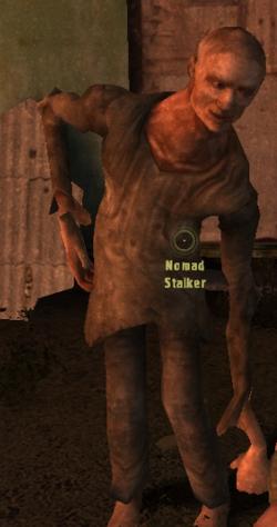 Char nomad