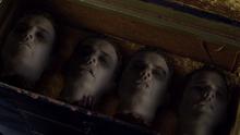 Lachlan Naga heads (220)