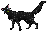 File:Jumpbreeze.medicat.png