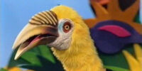 Jim Henson's Animal Show (season 3)