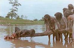 File:Cannibal holocaust piranha scene.jpg