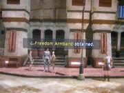 Freedom-armband