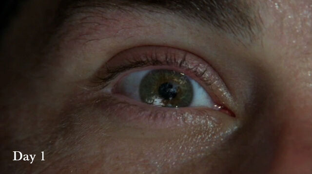 File:Eye1.jpg