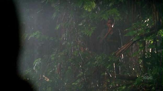 Ficheiro:Walt jungle.jpg