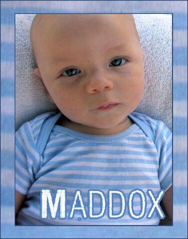 File:Maddox5.jpg
