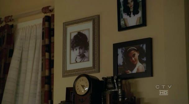 Ficheiro:Alex on the wall.jpg