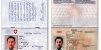 Ben's passports