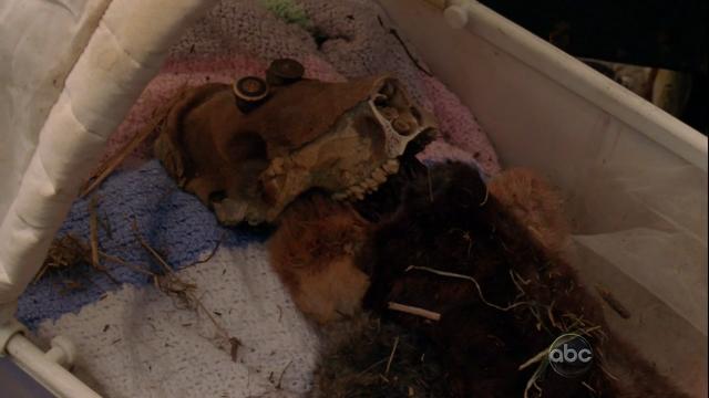 File:6x05 cradle skull.png