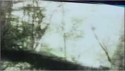 File:Dharma Booth Video Image - 1min45sec.jpg