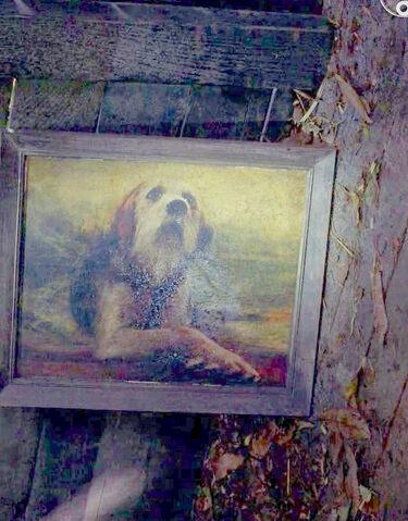 File:Dog pic in cabin copy.jpg