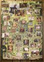 Miniatura da versão das 01h38min de 1 de março de 2007