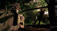Sawyer's Cage