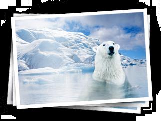 File:PolarAdventure.png
