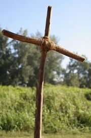 Shannon's grave.jpg