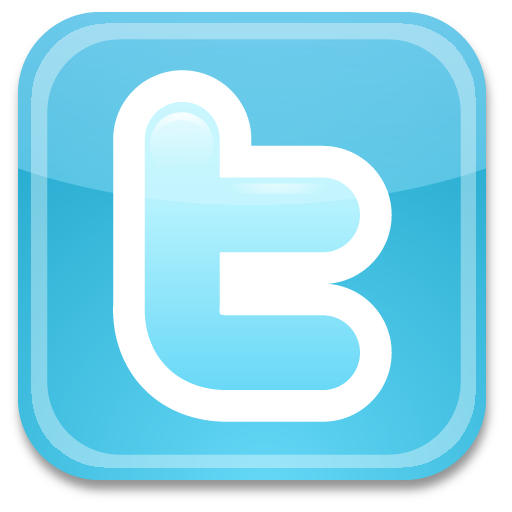 Ficheiro:Twitter-icon.png
