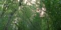 Thumbnail for version as of 15:07, September 18, 2010