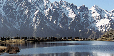 File:White mountains.png