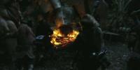 Skirmish in the Trollshaws