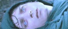 Frodo Entering the Shadow World