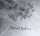 Flies And Spiders