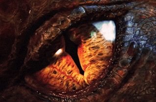 File:Smaug eye.jpg