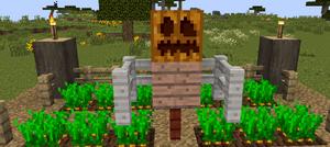 Creative Scarecrow