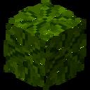 LeavesBanana