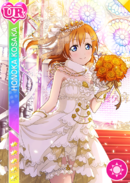 UR 346 Transformed Honoka June Ver.
