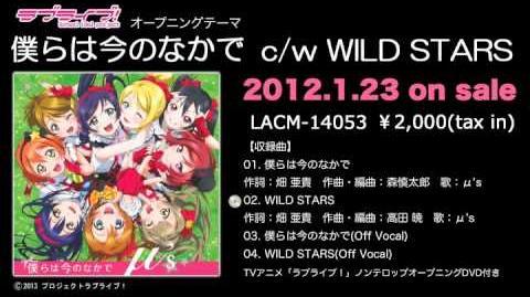 WILD STARS PV