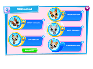 LittlestPetShopChihuahuasCollection 5Variations