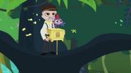 Purple Monkey with organ grinder