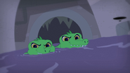 Sewer Gators coming