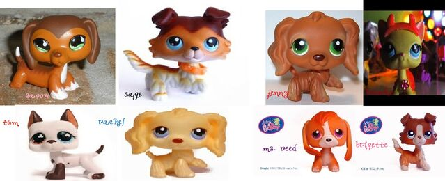 File:The real lps popular characters part 1.jpg